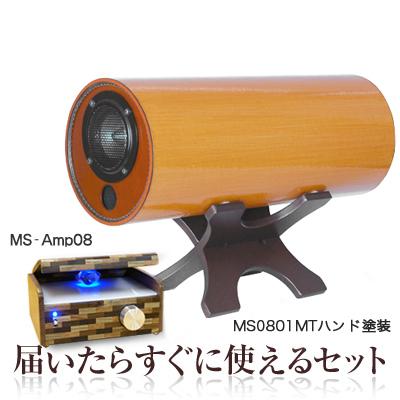 波動スピーカーMS0801シリーズ&専用アンプセット