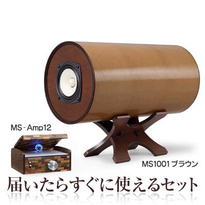 波動スピーカーMS1001シリーズ&専用アンプセット